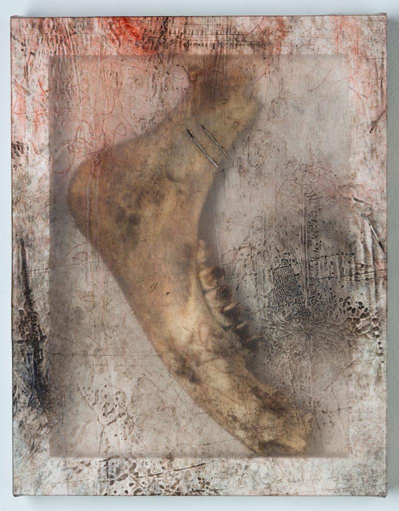 Sonya Kelliher-Combs, detail of Remnant (2016), moose jaw bone