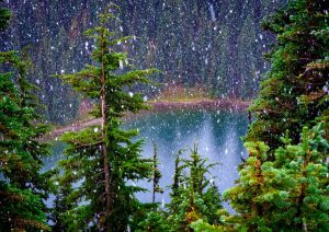 Louise Lake in Summer (Mt. Rainier), 2015, digital archival print, 16 by 24 inches