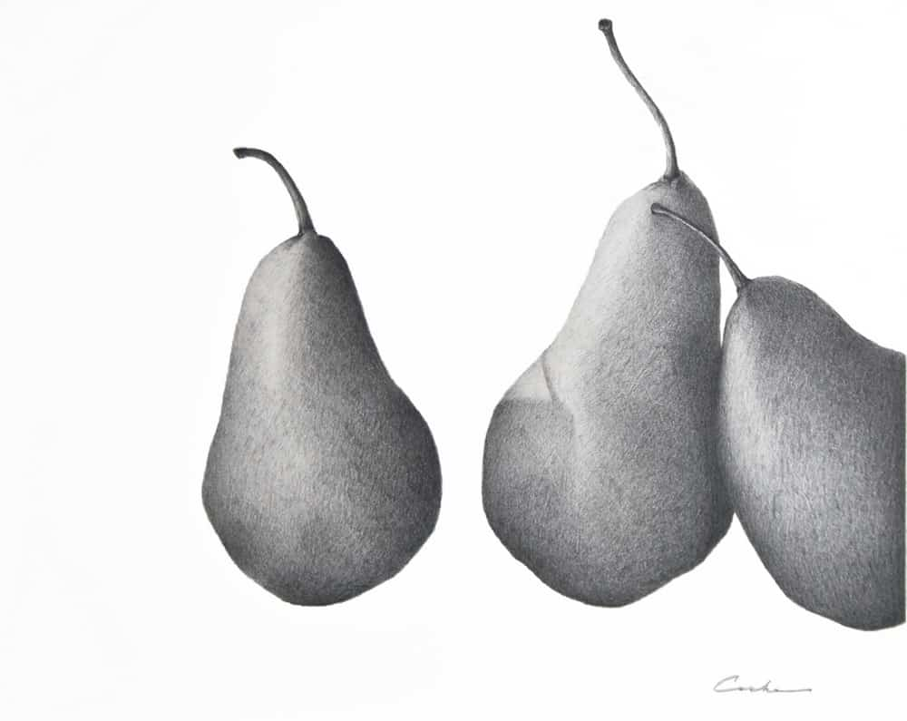 Three Pears (2007), graphite on panel, 10 by 24 inches