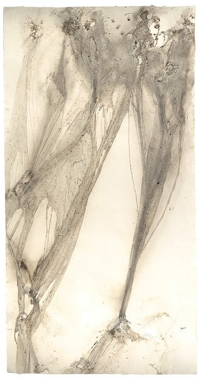 71 degrees East (2015), naturally occurring charcoal, driven by rain on paper, 51 by 99 inches