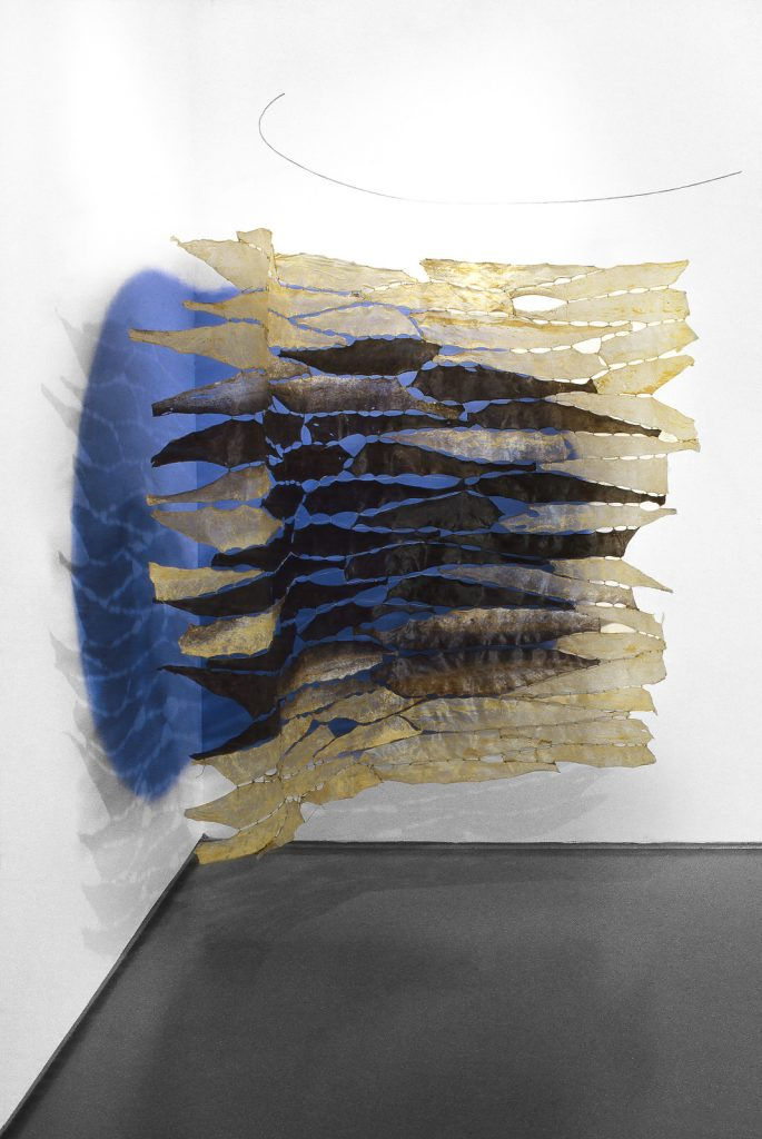 Iris (2002), halibut fish skin, fishing line, wall paint,wire, 6 feet 2 inches by 10 feet