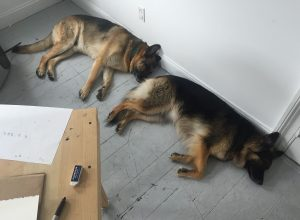 """Still Life with Shepherds shows Euan and Shalah at their favorite studio job—""""supporting the wall,"""" says Marieken Cochius."""