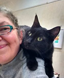 """Chistine Sauer's Toby has been through a terrible time lately but is responding well to acupuncture. """"He's a small cat with a huge personality,"""" says the artist."""