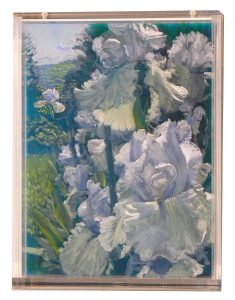 Iris Bed, 2 Mornings (2008), 13.5 by 10.75 by 2.25 inches
