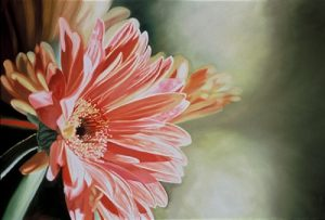 Gerber Daisy 2 (2004), oil on linen, 40 by 60 inches