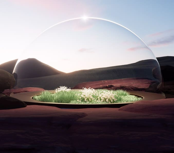 Alexis Christodoulou - The Biosphere Project NFTs